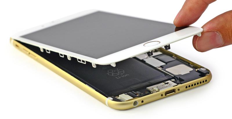 Les entrailles de l'iPhone6Plus (Photo : iFixit).