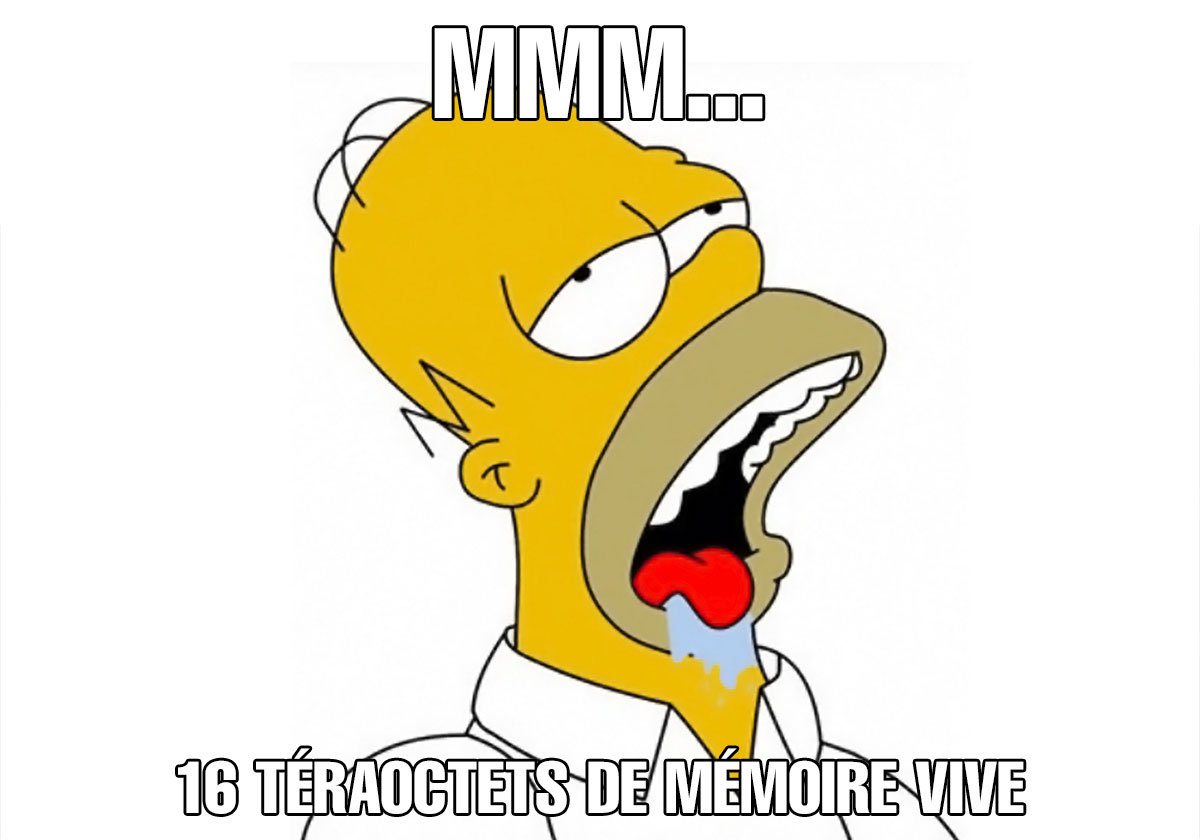 homer16to_